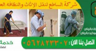بالصور شركة تنظيف منازل , اكبر شركات التنظيف في العالم 343 3 310x165