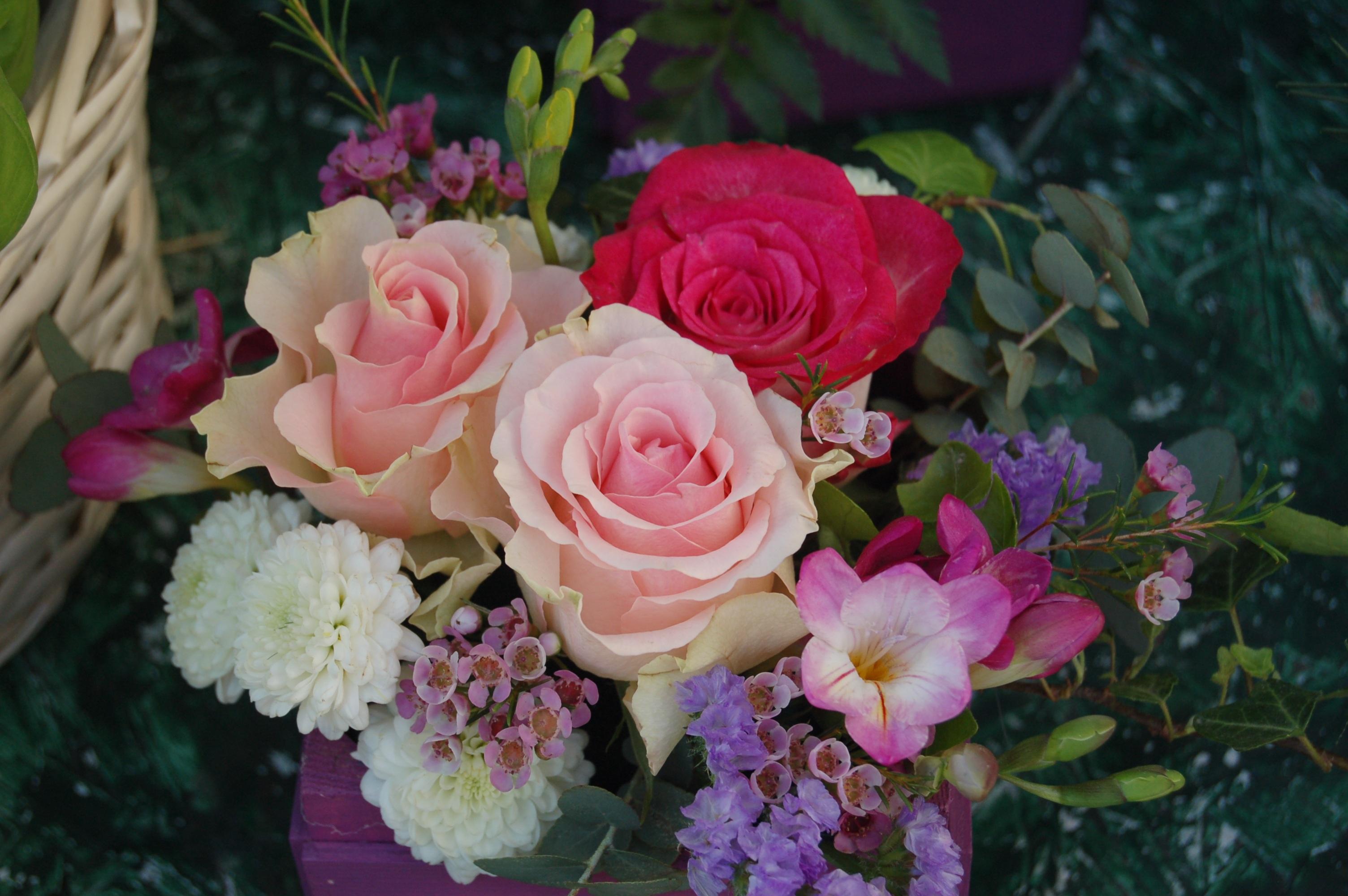 بالصور صور اجمل ورد , اجمل صور لبوكيهات الورد 3493 5