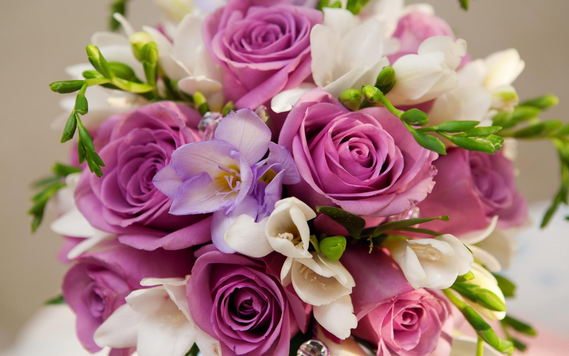 بالصور صور اجمل ورد , اجمل صور لبوكيهات الورد 3493 8