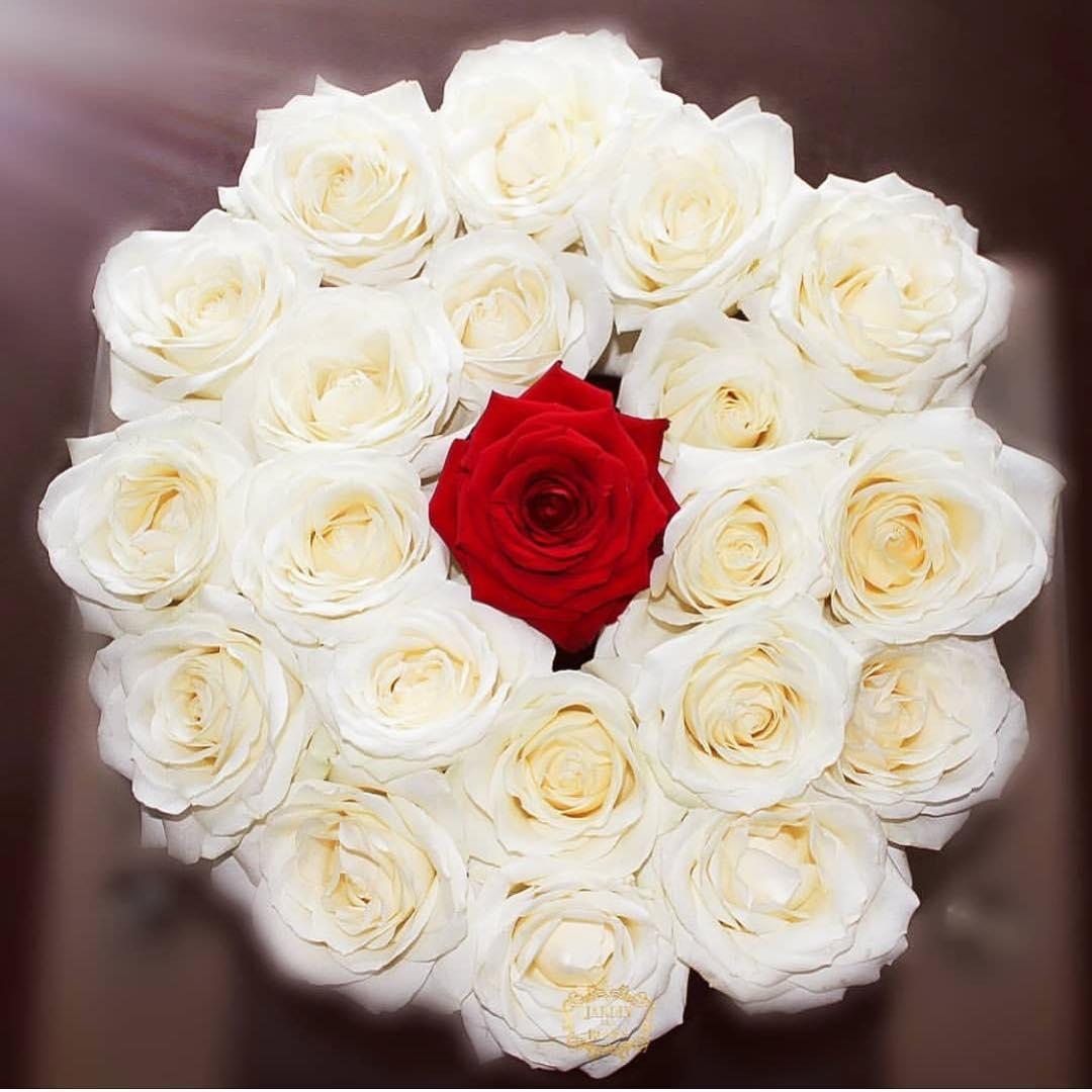 بالصور اجمل بوكيه ورد فى الدنيا , صور الورد روعة 3495 3