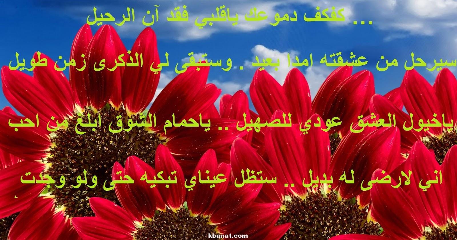 بالصور اجمل رسالة حب , كلمات ستجعل حبيبك يموت فيك 3592 11