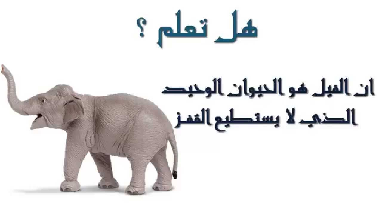 صورة هل تعلم عن الحيوانات , معلومات لم تسمع عنها من قبل سبحان الله 3620 1
