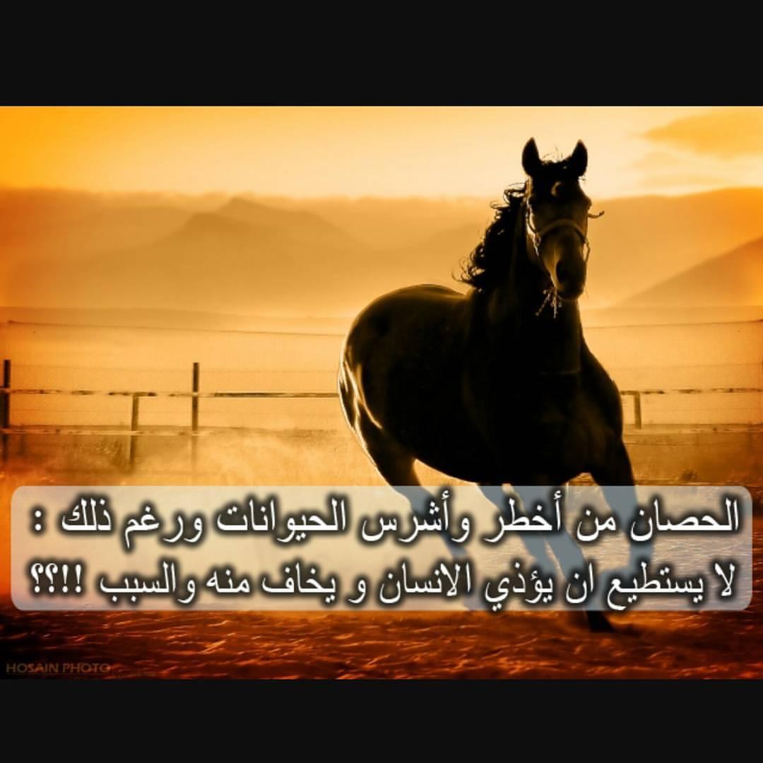بالصور هل تعلم عن الحيوانات , معلومات لم تسمع عنها من قبل سبحان الله 3620 10