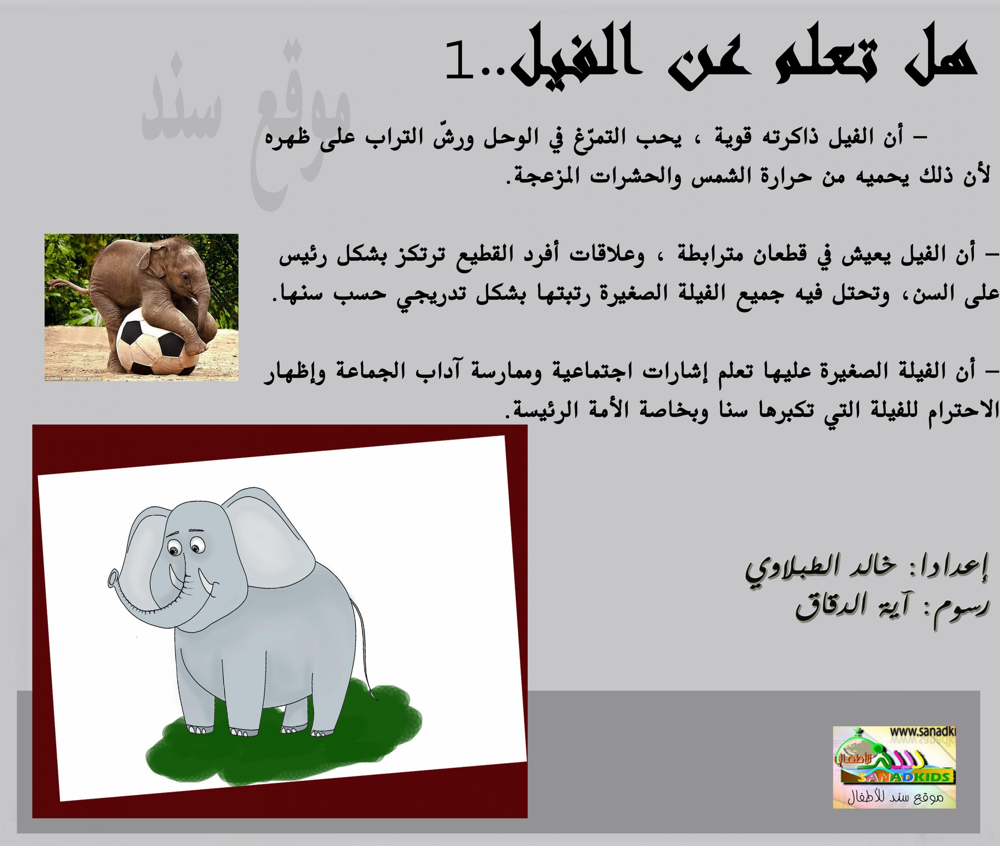بالصور هل تعلم عن الحيوانات , معلومات لم تسمع عنها من قبل سبحان الله 3620 11