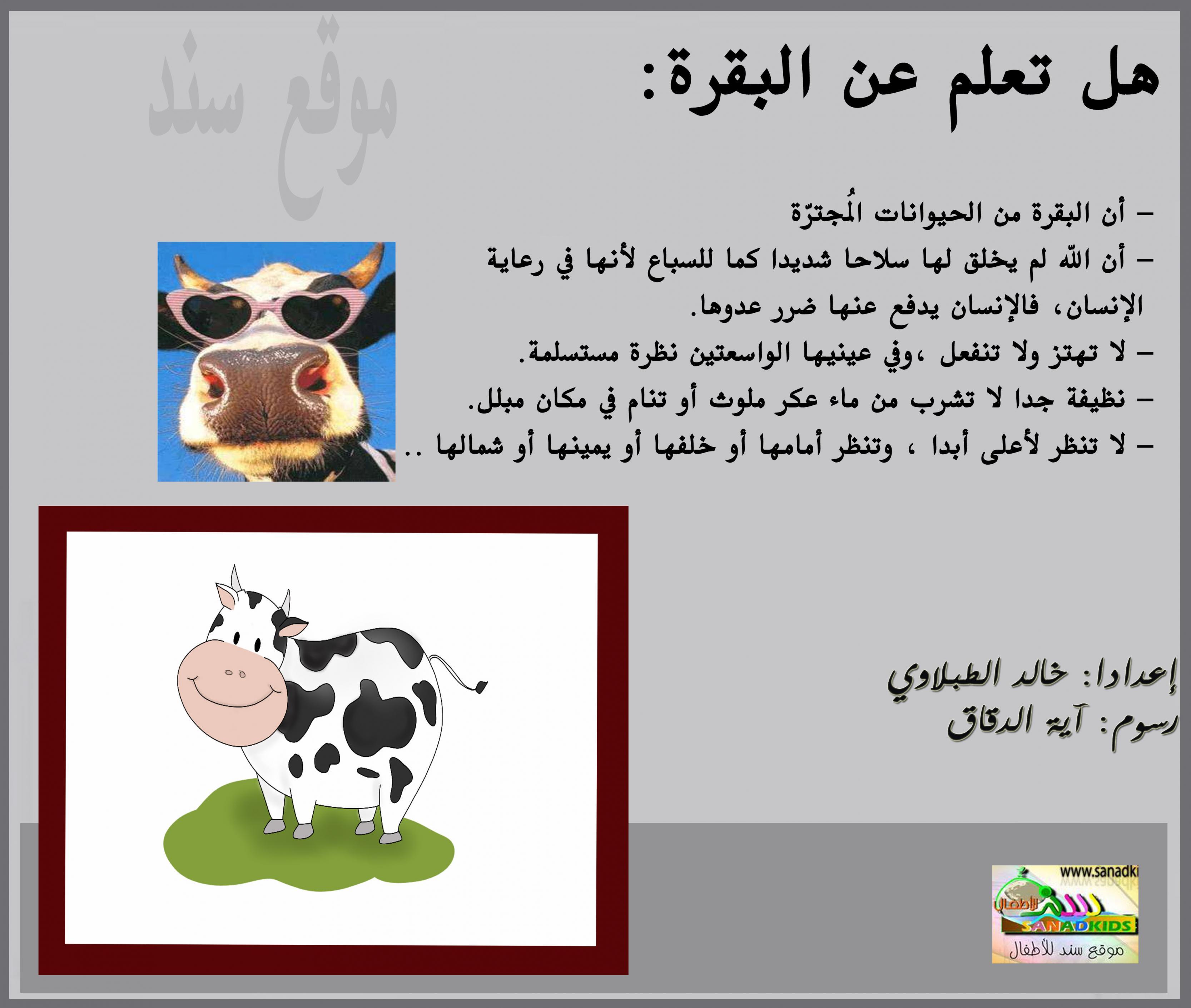 صورة هل تعلم عن الحيوانات , معلومات لم تسمع عنها من قبل سبحان الله 3620 6