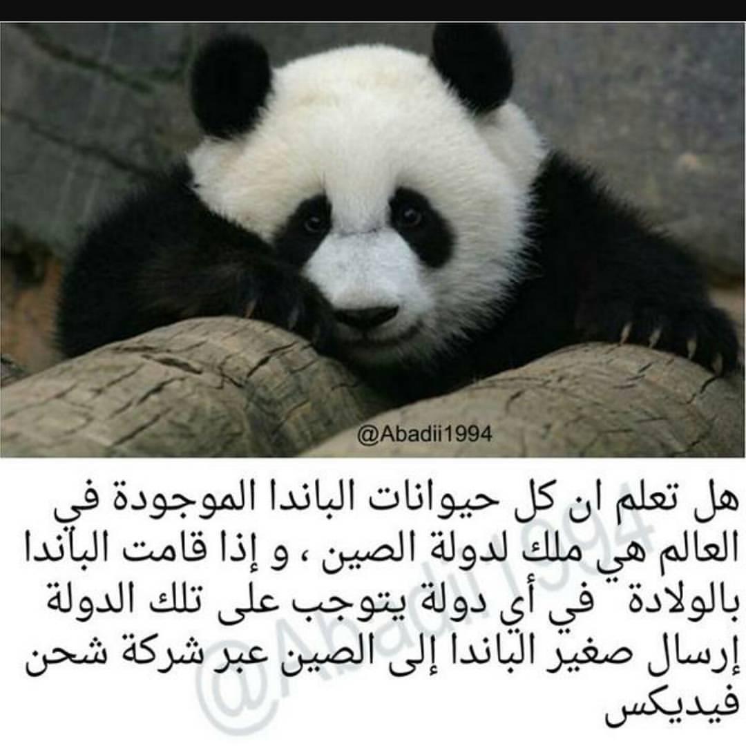 صورة هل تعلم عن الحيوانات , معلومات لم تسمع عنها من قبل سبحان الله 3620 7