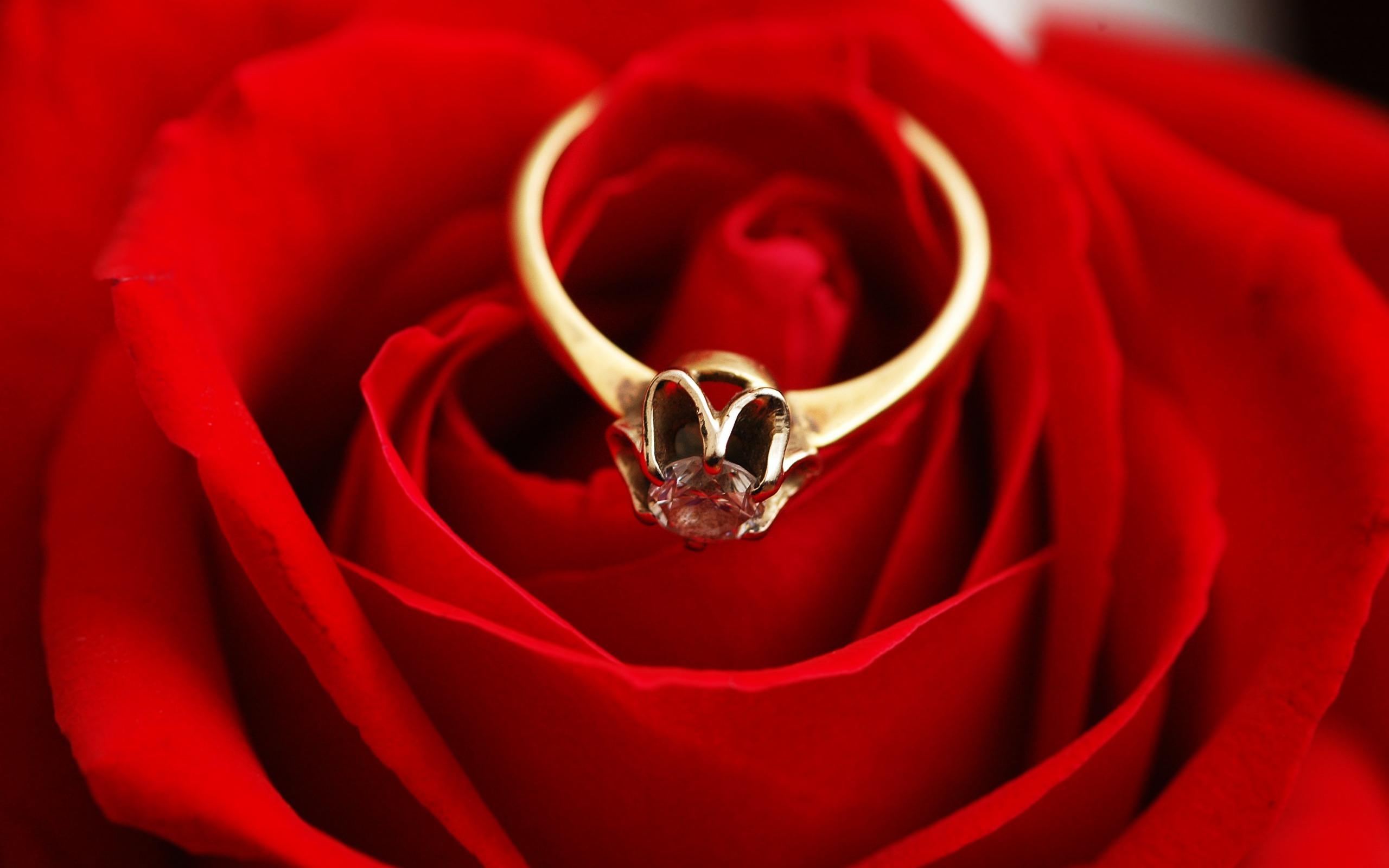 بالصور خلفيات زواج , صور خلفيات مميزه لا مثيل لها لاجمل عروسين 3626 8