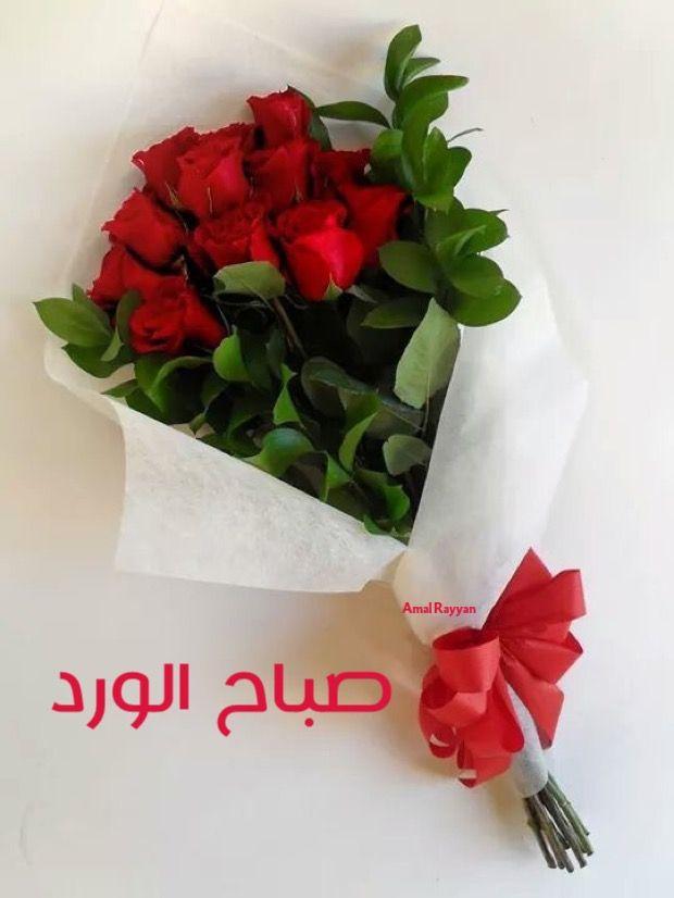 صورة ورد صباح الخير , صباح الورد علي الورد 396 1
