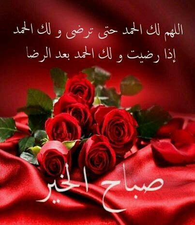صورة ورد صباح الخير , صباح الورد علي الورد 396 4