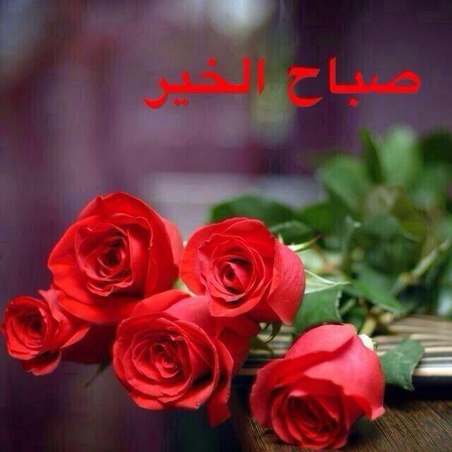 صورة ورد صباح الخير , صباح الورد علي الورد 396 7