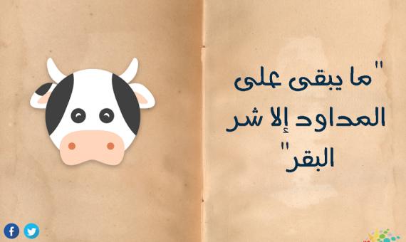 """""""ما يبقى على المداود إلا شر البقر""""  اليوم العالمي للمرأة 2019 أمثال شعبية وكست الست المصرية"""