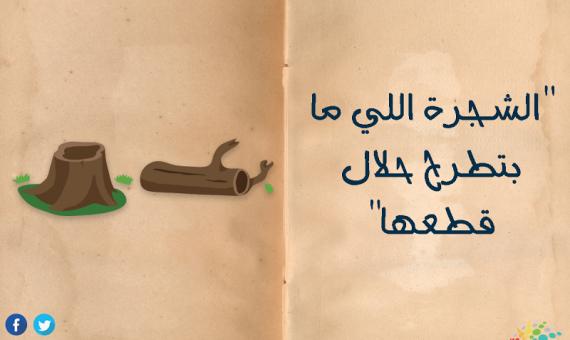 """""""الشجرة اللي ما بتطرح حلال قطعها""""  اليوم العالمي للمرأة 2019 أمثال شعبية وكست الست المصرية"""