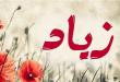صوره معنى اسم زياد , ماهو معنى اسم صبي زياد
