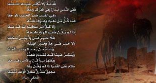 صور قصيدة عن الصديق , الصداقه الحقيقيه وروعتها