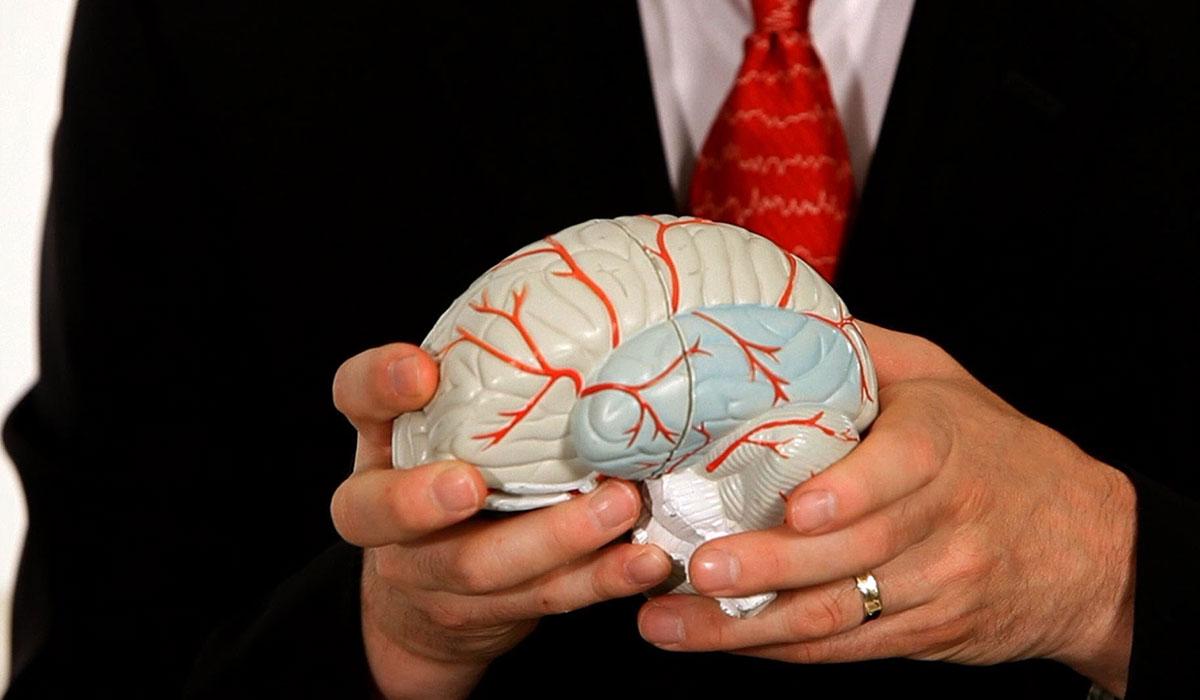 صورة مرض الصرع , احصل علي المعلومات الكافيه عن الصرع