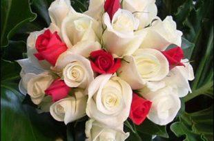 صوره زهور جميلة , اشكال والوان من الزهور المدهشه
