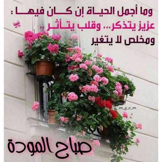 بالصور اجمل صباح الخير , كلمات صباح الخير 5693 4