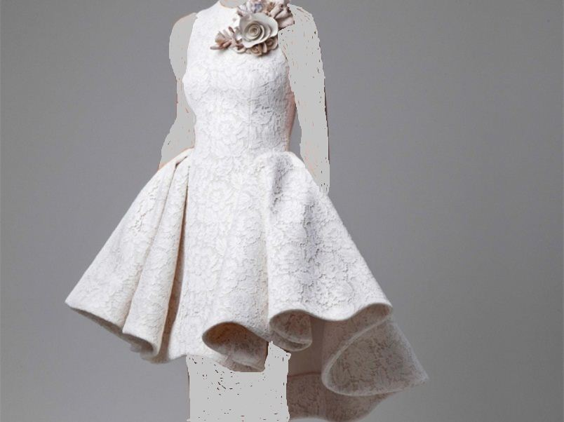 بالصور فساتين قصيره دانتيل , تشكيله من الفساتين الدانتيل الرائعه للمناسبات 6220 4