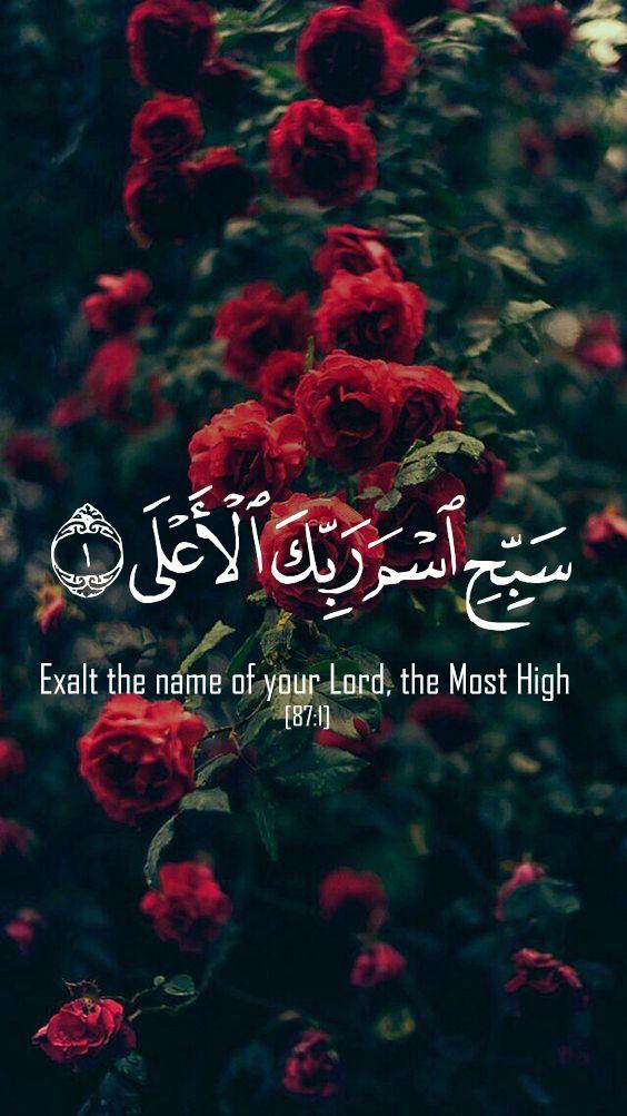 صورة اجمل الصور الاسلامية المعبرة , اليك اخي المسلم احلي كلمات و صور دينية 1647 5