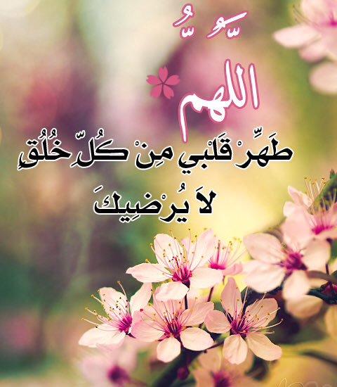 صورة اجمل الصور الاسلامية المعبرة , اليك اخي المسلم احلي كلمات و صور دينية 1647 9