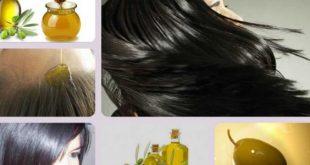 صور زيت الزيتون للشعر , اهمية زيت الزيتون في علاج الشعر