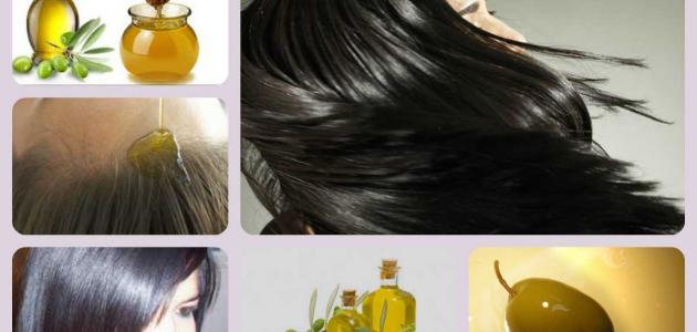 صورة زيت الزيتون للشعر , اهمية زيت الزيتون في علاج الشعر