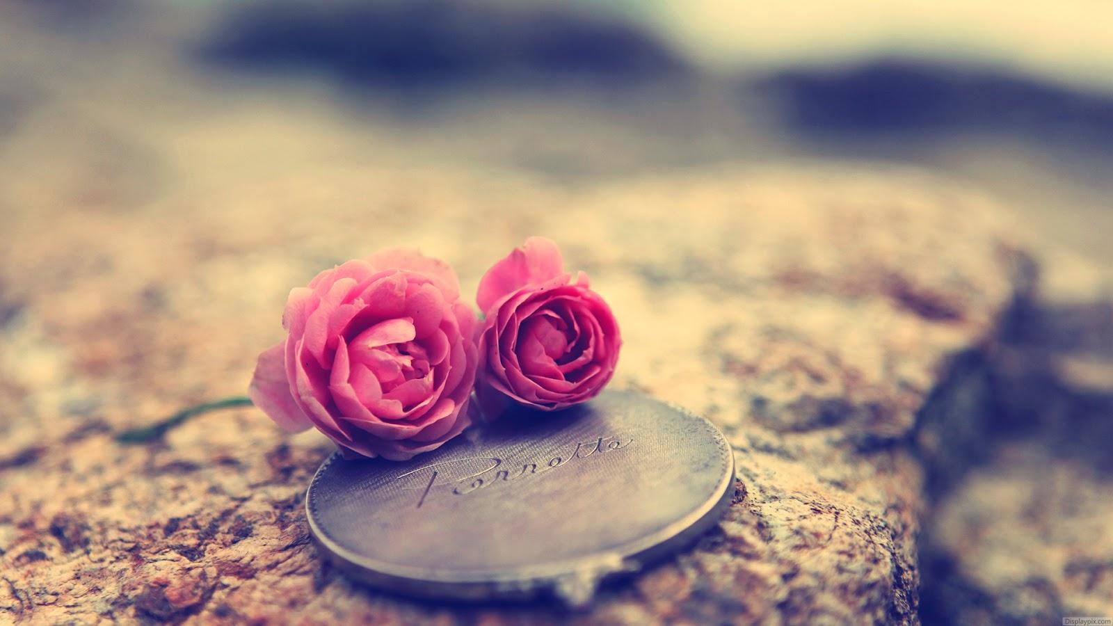 بالصور اجمل الصور للفيس بوك , صور للفسيبوك جميلة