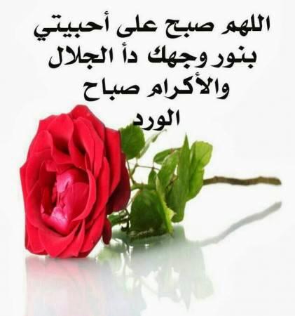 صورة احلى صباح للحبيب , كلمات صباحية رومانسية و رائعة للحبيب 1780 4