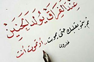 بالصور الشعر العربي , اجمل ابيات الشعر 1977 3 310x205