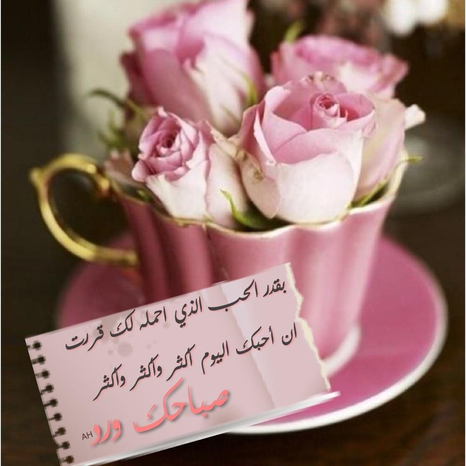 بالصور رسائل صباح الحب , اجمل رسائل الحب الصباحية 1682 7