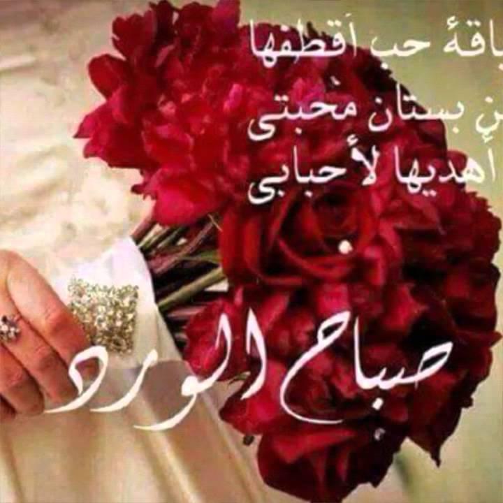 بالصور رسائل صباح الحب , اجمل رسائل الحب الصباحية 1682 8