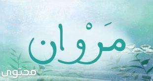 بالصور معنى اسم مروان , ماذا يعني اسم مروان ؟ 2282 310x165