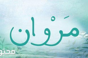 بالصور معنى اسم مروان , ماذا يعني اسم مروان ؟ 2282 310x205