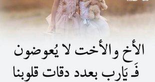 بالصور اجمل الصور عن الاخ والاخت , صور وكلمات جميلة عن الاخت والاخ 2509 310x165