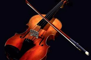 صور معلومات عن الة الكمان , ماهي اله الكمان