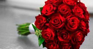 صور صور الورود الحمراء , اروع بوكيهات الورد الاحمر