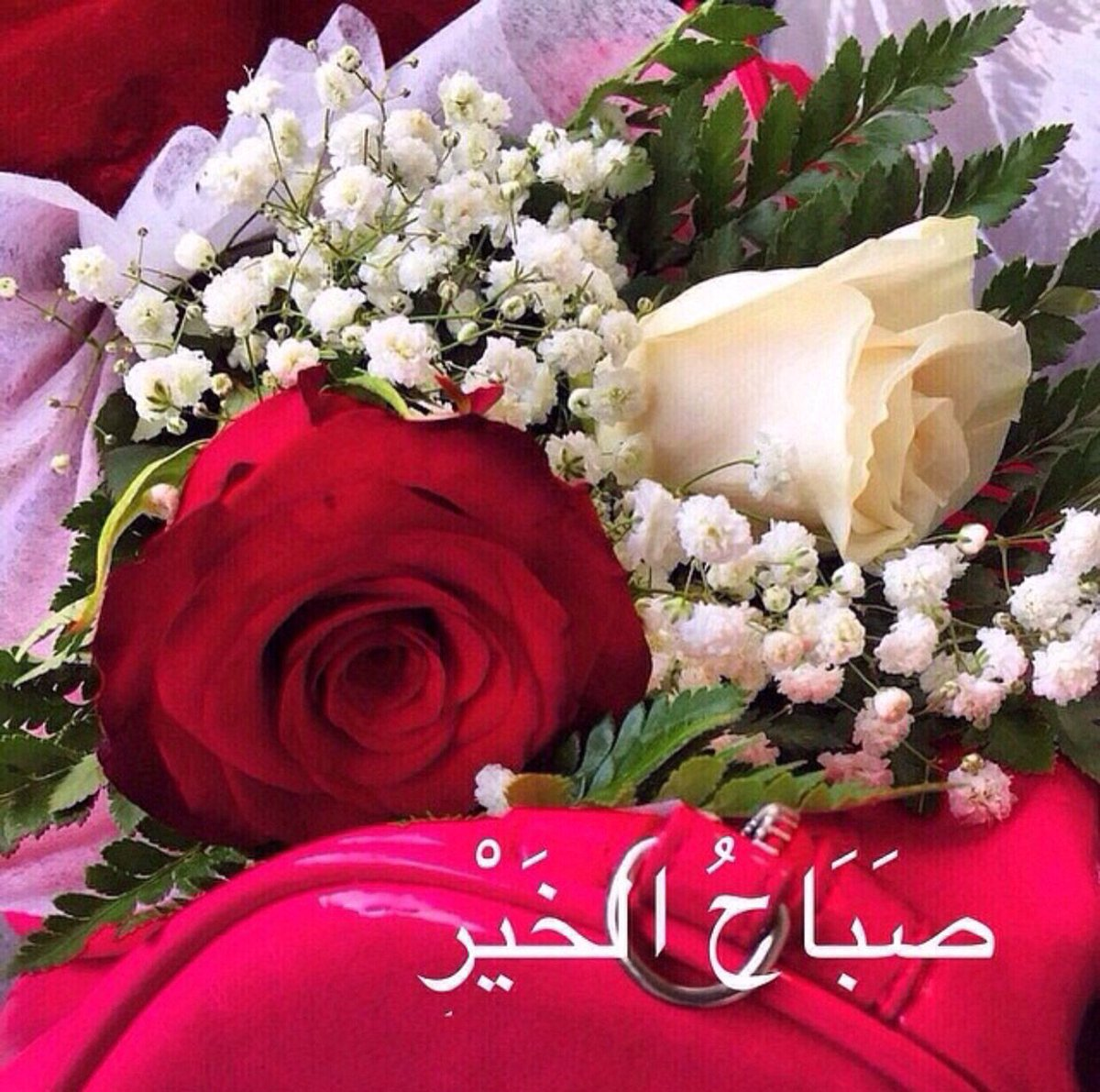 صورة صباح الخير زهور , صور ورود جميلة مكتوب عليها صباح الخير 11726 2