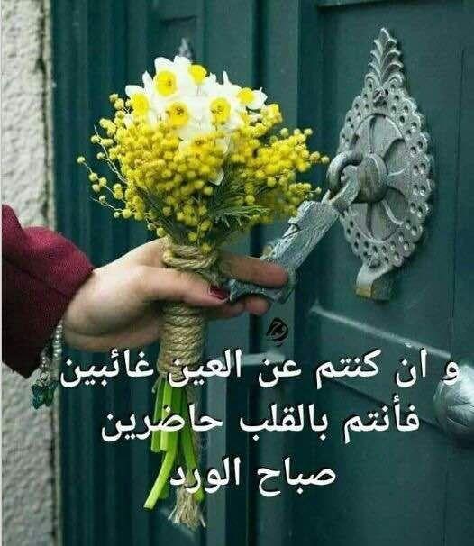 صورة صباح الخير زهور , صور ورود جميلة مكتوب عليها صباح الخير 11726 6