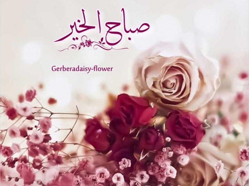 صورة صباح الخير زهور , صور ورود جميلة مكتوب عليها صباح الخير 11726 8
