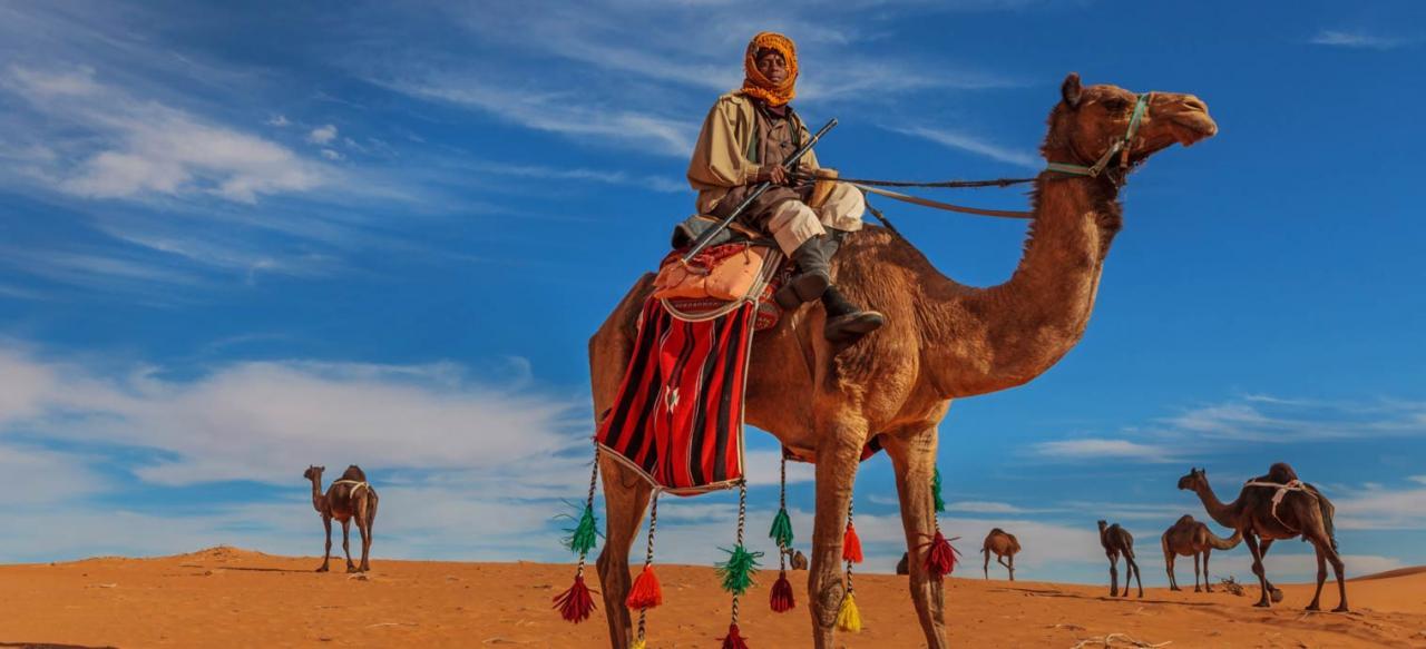 صورة معلومات عن حياة البدو , نبذه بسيطه عن اسلوب الحياة في البدو