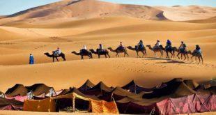 صور معلومات عن حياة البدو , نبذه بسيطه عن اسلوب الحياة في البدو