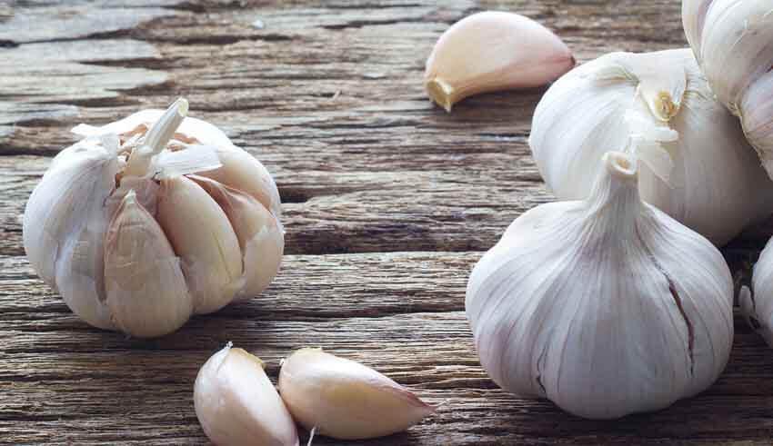 صورة فوائد الثوم للشعر والصلع , ماهى الفوائد الهامه للتوم في انبات الشعر