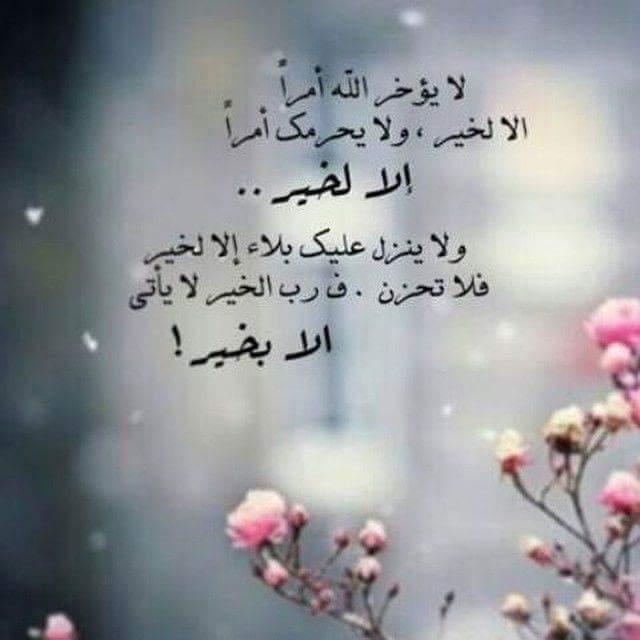 صورة كلمات حلوه وجميله , اجمل الصور المكتوب عليها عبارات مميزه 11861 2
