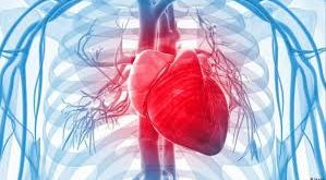 صور هل خفقان القلب خطير , اعراض خفقان القلب