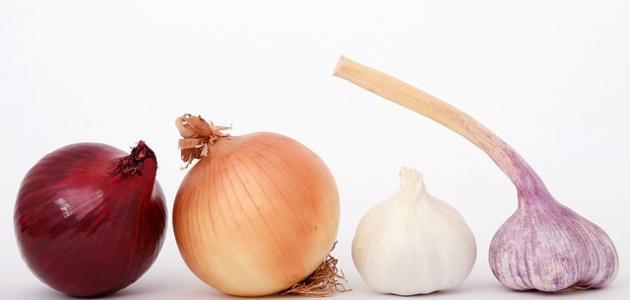 صورة فوائد الثوم والبصل , الثوم والبصل اكل مفيد