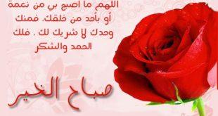 صور رسائل ورد للحبيب , معاني الورد الجميلة