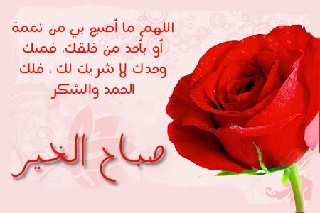 صورة رسائل ورد للحبيب , معاني الورد الجميلة