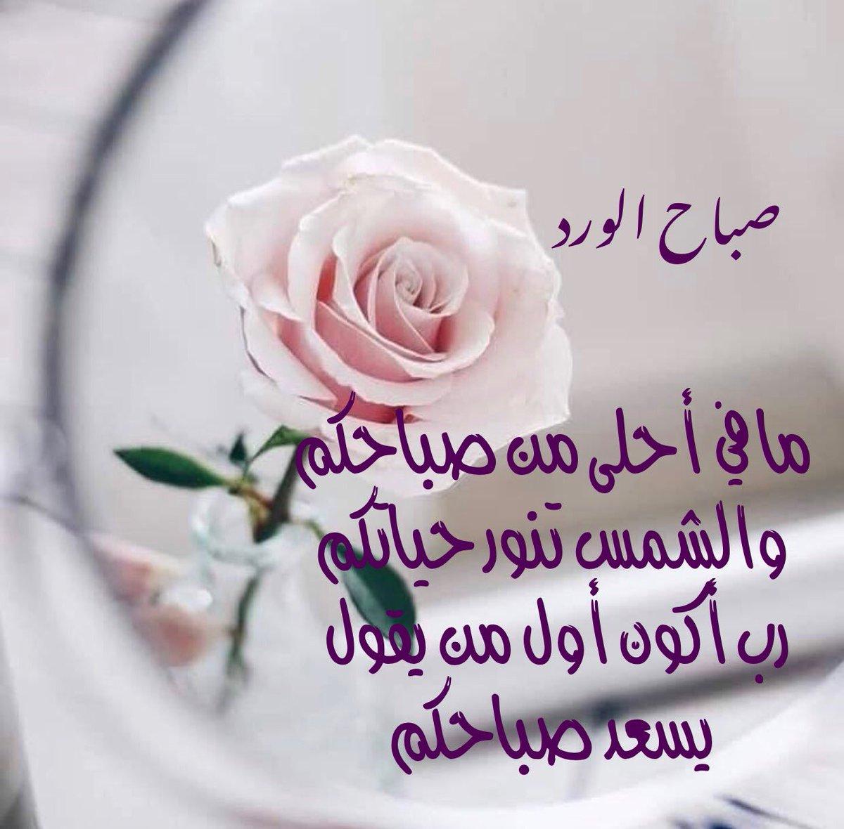 صورة رسائل حب صباحية, اجمل رسائل صباحية للحبيب 3656 5