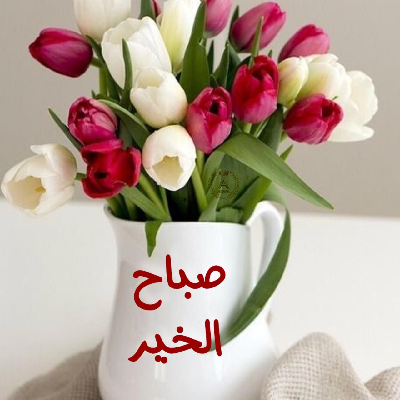 صورة مسجات صباح الخير حبيبي, عبارات صباحية رومنسيه 4306 5
