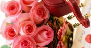 زهور الحب, أنواع الورود و معانيها